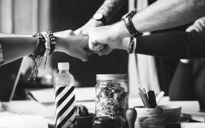 Service de mentorat et de codéveloppement  pour les entrepreneurs de Mékinac et des Chenaux.